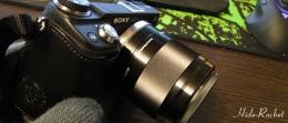 SEL50F18_006.jpg