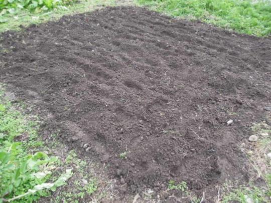 土作り 耕す 2512