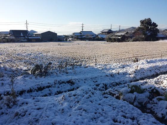 yuki011003.jpg