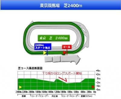 コースレイアウト 東京2400m