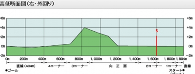 京都芝1600m