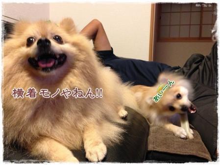 横着モノやねん!!
