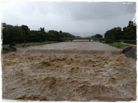 昨日の鴨川