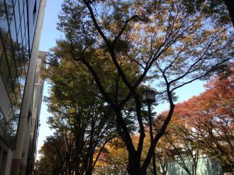 hironko+003_convert_20131120183645.jpg