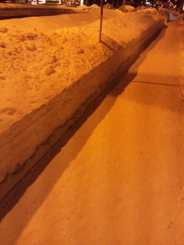 20131231用・組織的雪かき