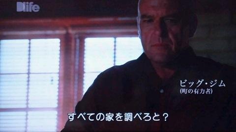 20140113用・ビッグ・ジム
