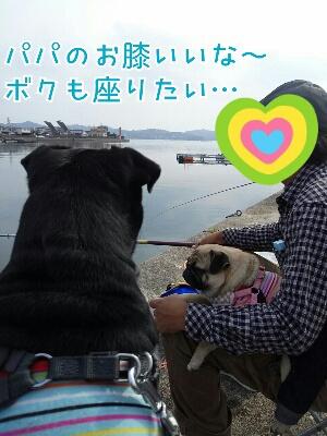 fc2_2013-11-06_19-48-48-634.jpg