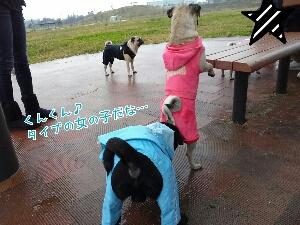 fc2_2013-11-11_20-50-50-466.jpg