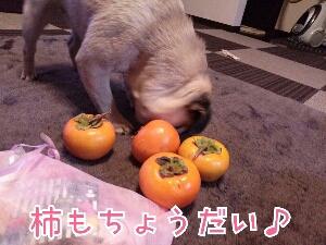fc2_2013-11-14_19-54-12-672.jpg