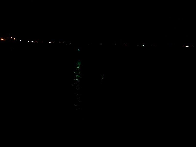 夜釣りの楽しみ
