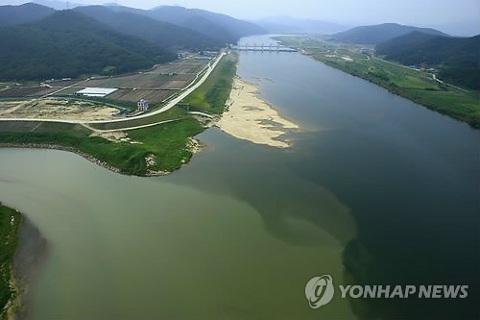 環境】洛東江で「緑潮」が深刻化...