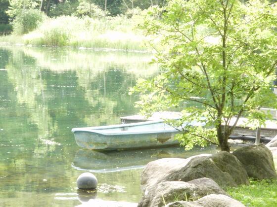 torinumakouen2012-01.jpg