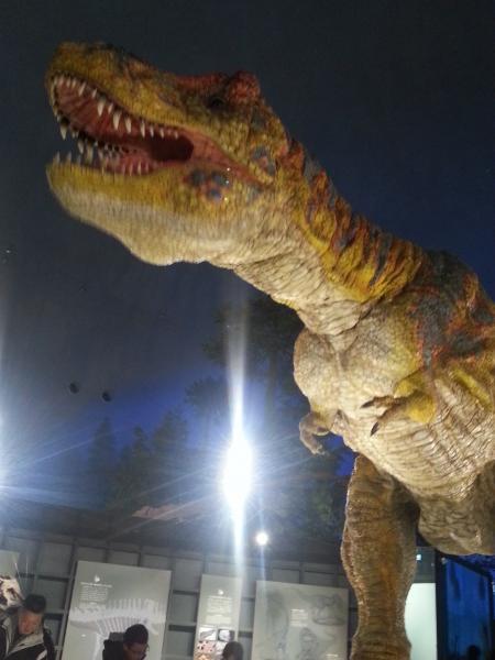 ティラノザウルス(サイズ変更)