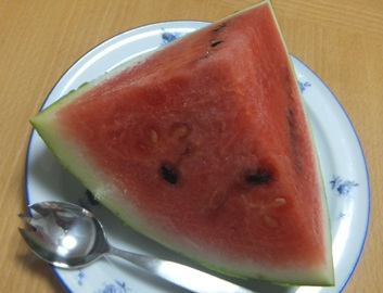 FUJI_3586.jpg
