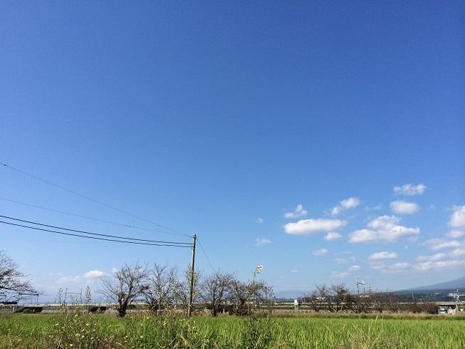 141028田子の浦03