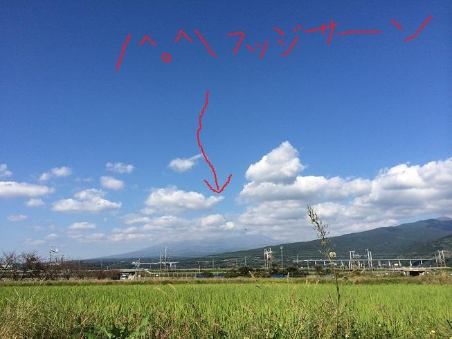 141028田子の浦04