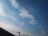 20131206pic.jpg