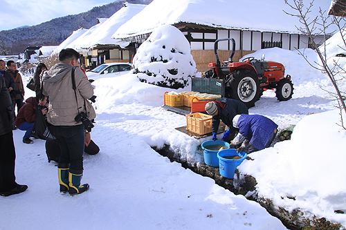 2014-01-12_4411.jpg