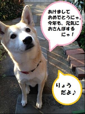 ryo_20140104181913aec.jpg