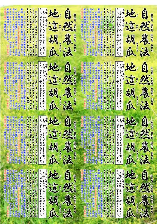 20130813131704d43.jpg