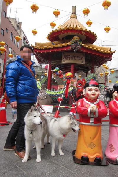 201212神戸南京町kakogggahshknmciooyv