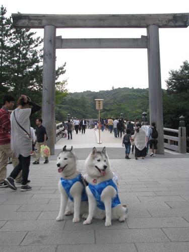 201309お伊勢さん鳥居前IMG_6089