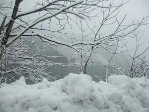 2013年12月福井・わん庵 001