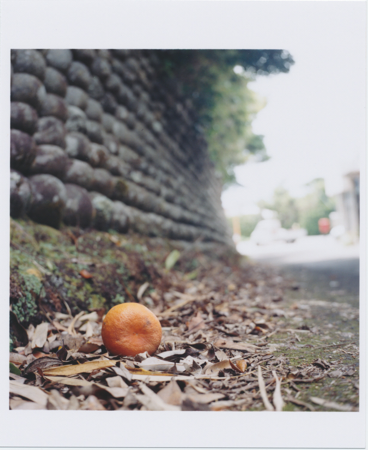 玉石垣03