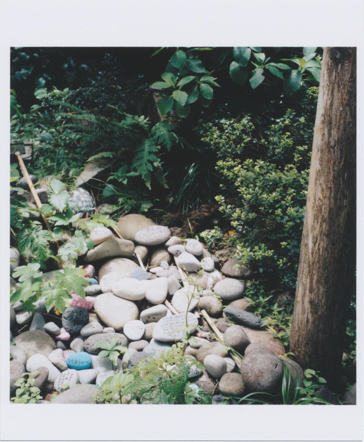 浅間神社の玉石