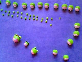 蛙、かえる、カエル