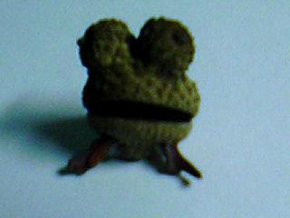 ドングリ帽子の蛙
