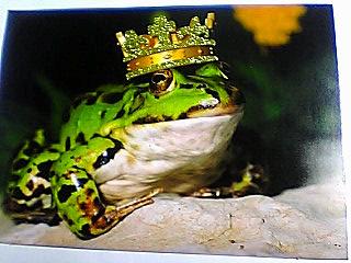 蛙の王様絵葉書♪