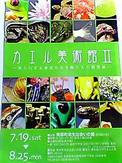 カエル美術館2