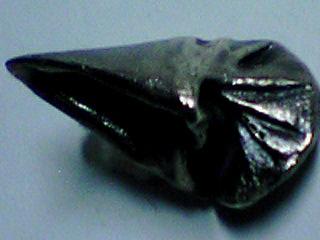 銀の巻き貝の後ろ