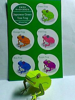 見本の蛙と共に