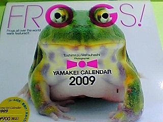 蛙カレンダー 09