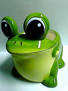 植木鉢になったカエルさん