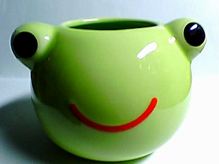カエルのお顔が植木鉢