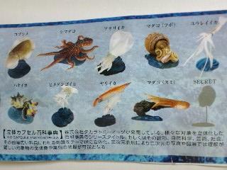 原色タコ・イカ図鑑
