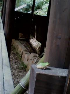 酒船石遺跡 中腹の石垣