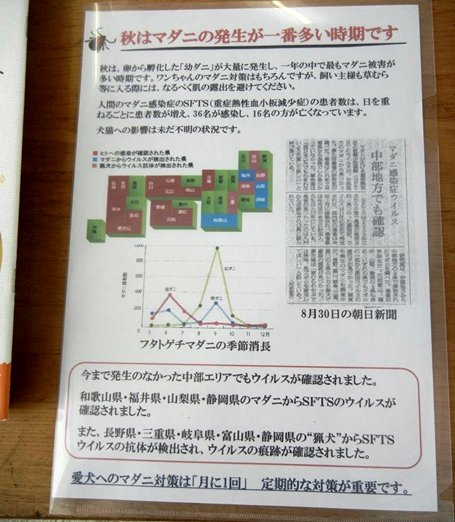 DSCN3868.jpg