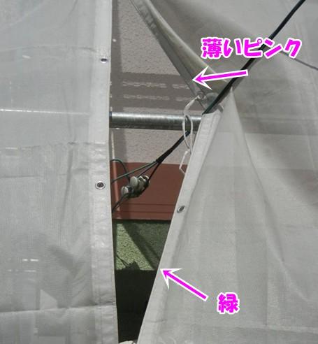 DSCN4715.jpg