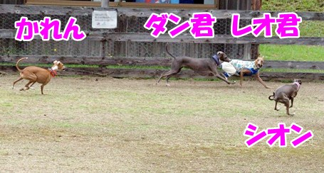 DSC_3341.jpg