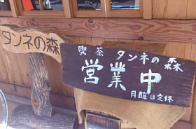 タンネの森1 (2)