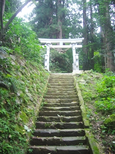 上の神社への階段