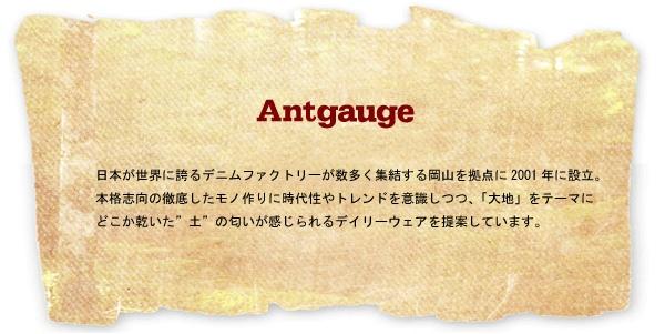 antgauge_ttl_201308011503585c3.jpg