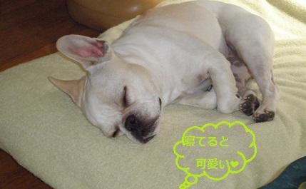 幸せそな寝顔です