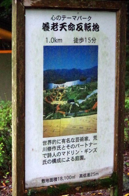 115_31.jpg
