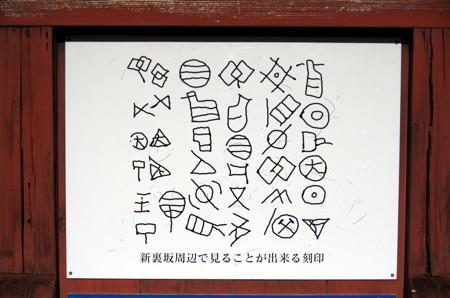 127_61.jpg