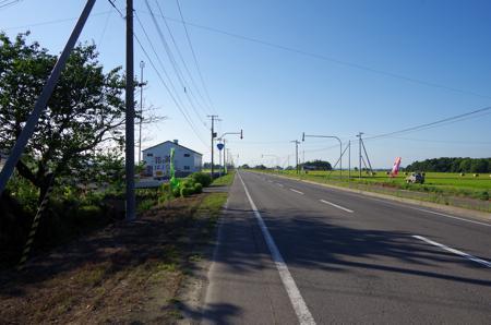 IMGP3845.jpg